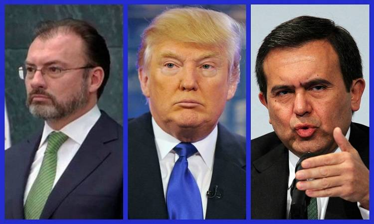 Ante decisiones de Trump, gobierno federal, pasivo, shockeado